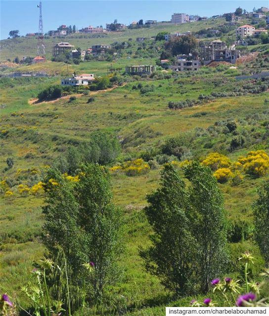 رجعت الصيفية lebanon livelovelebanon livelovebeirut beiruting... (El Qlaïaâ, Al Janub, Lebanon)