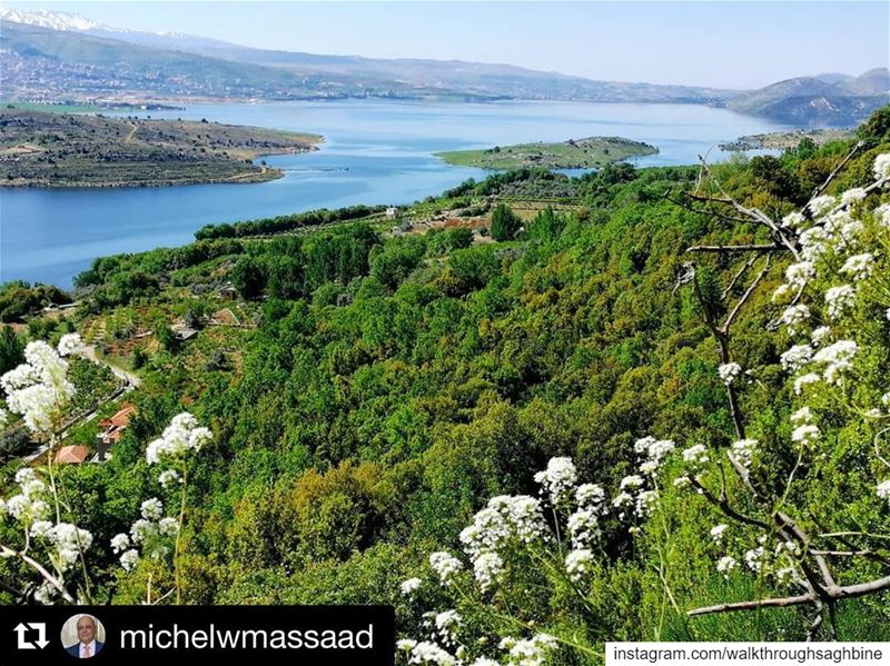 Repost @michelwmassaad ・・・ Saghbine lake springnature livelovebekaa ... (Saghbîne, Béqaa, Lebanon)