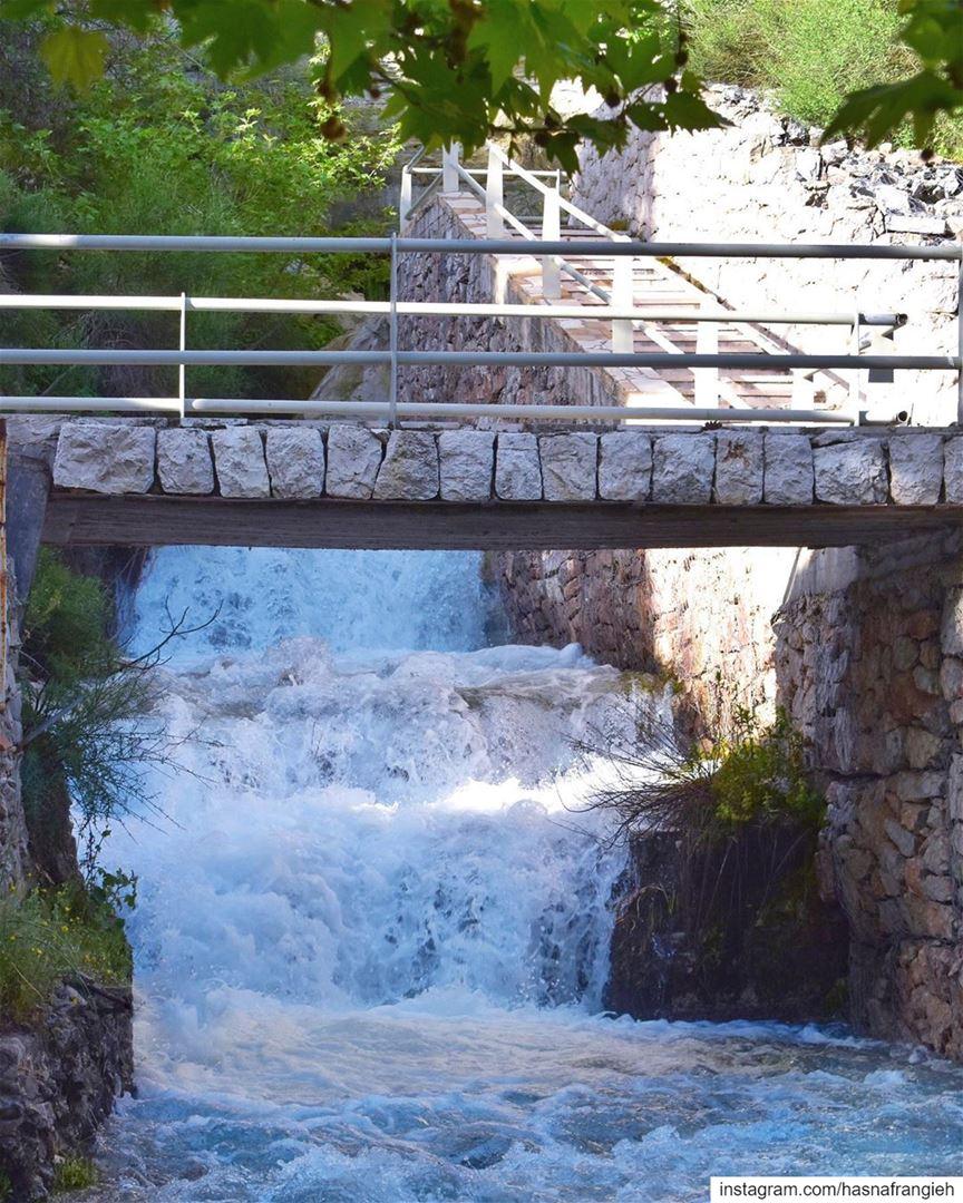 هون الهوا غير الهوا بكلّ الدنيوهوني عَ صوت المَي بيغنّي الحَجَر - جورج ي (Ehden, Lebanon)