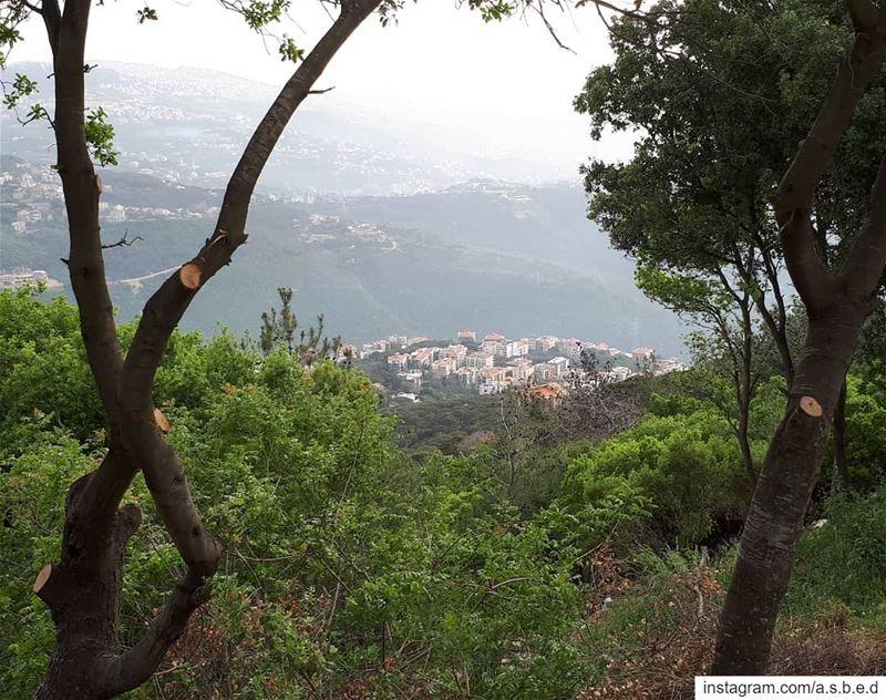 🏡Mount Lebanon🌳... beitmeri monteverdi liban Lebanon summer ...