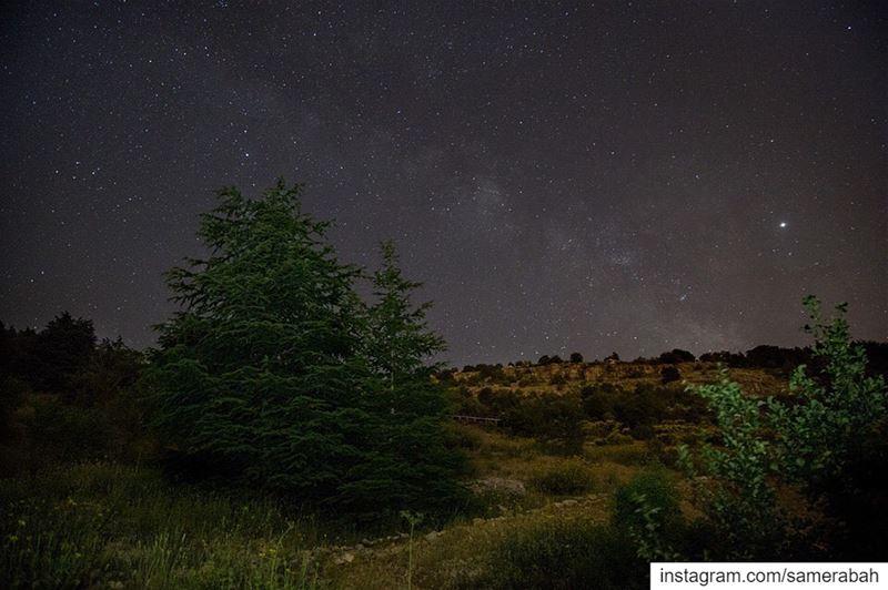......... nightphotography astrophotography milkyway ... (Cedars Ground Campsite)