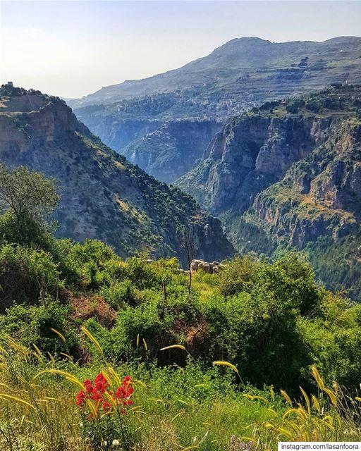 lebanoninapicture ptk_lebanon livelovebeirut insta_lebanon ... (Bcharreh, Liban-Nord, Lebanon)