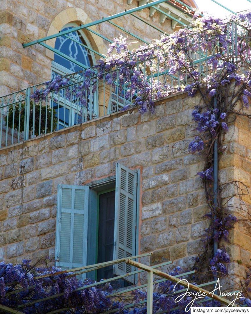 و أنا هربت من الشباك...🏡🏡🏡🏡🏡🏡🏡🏡🏡🏡🏡🏡🏡🏡🏡🏡 lebanon ... (Dhoûr Ech Choueïr, Mont-Liban, Lebanon)