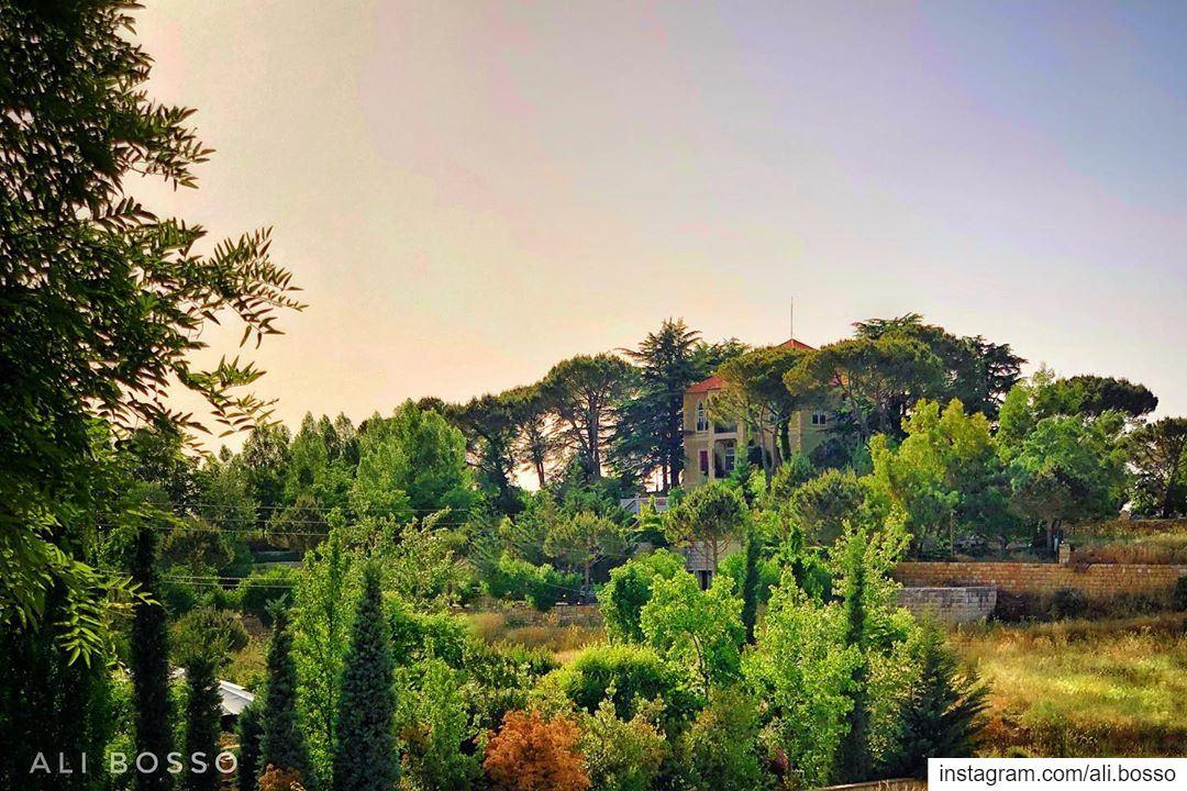 In nature, light creates the color🏡🇱🇧........ beirut lebanon ... (Sawfar, Mont-Liban, Lebanon)