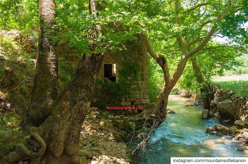 A watermill almost onto the river. It channels the water from a higher... (Nahr el Jaouz)