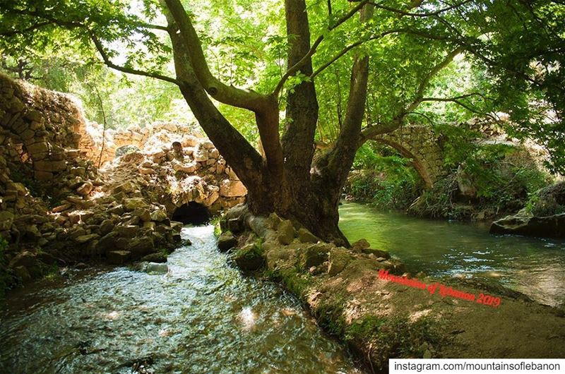 River and bridge on the right, remains of a watermill (basement or water... (Nahr el Jaouz)