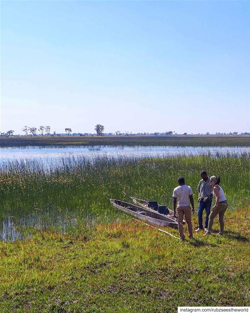 Okavango Delta, Botswana: we spotted a hippo 🌾🦛 rubzseestheworld...... (Okavango Delta)