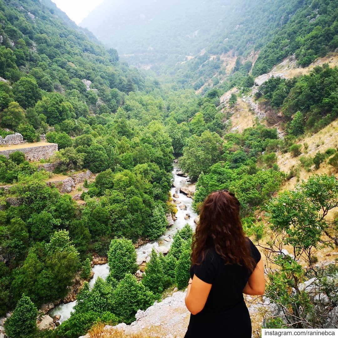 Relationship 🍃 lebanon hikingadventures chbebieh proud homesweethome... (Lebanon)
