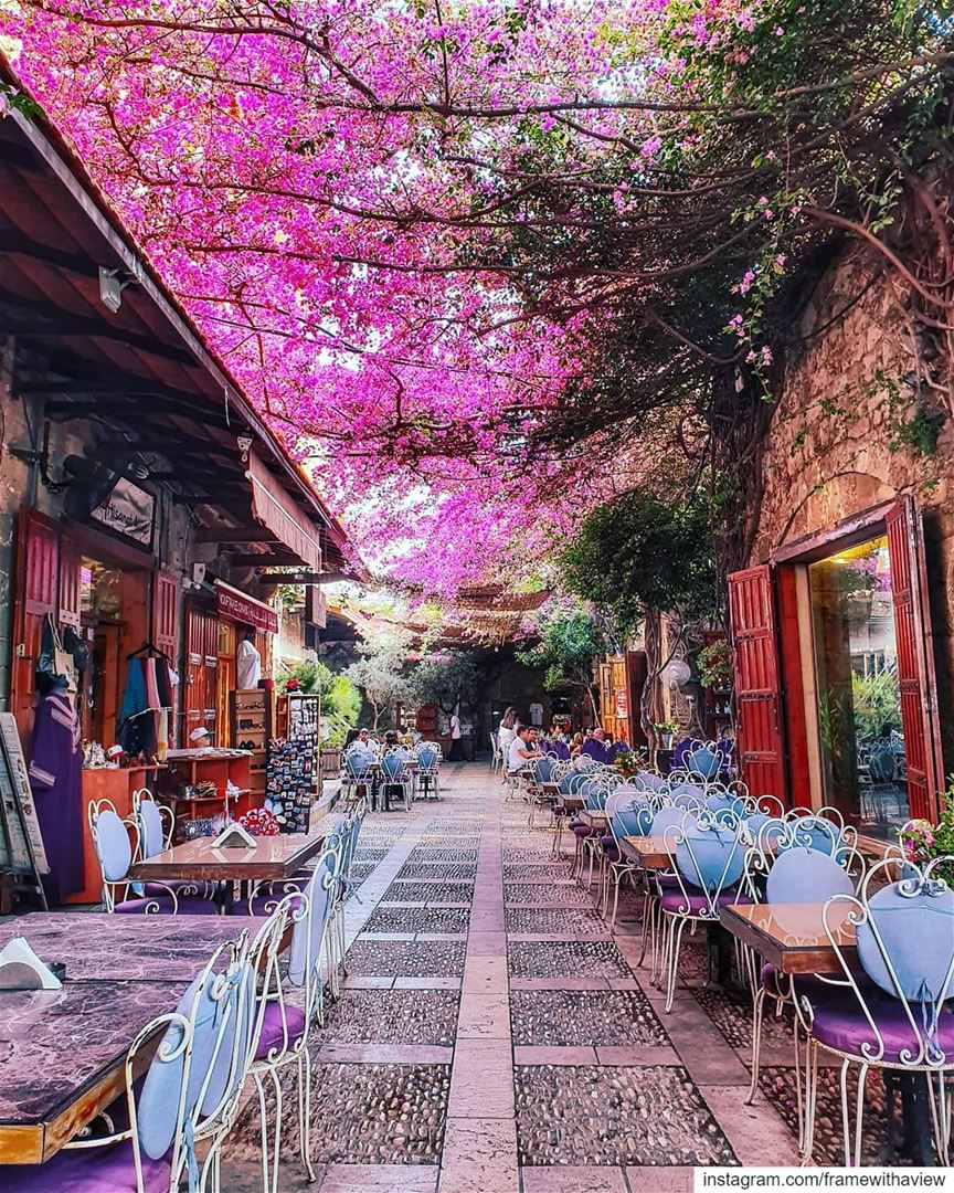 Not only am I standing in a beautiful ancient city and what is known to be... (Byblos, Lebanon)