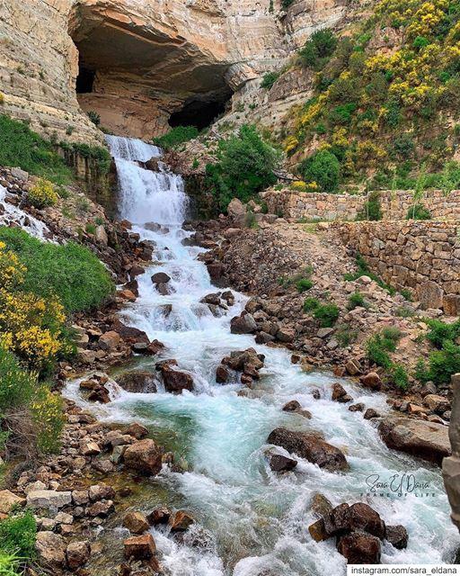 Wild, Beautiful & Always Free 💦 (Lebanon)