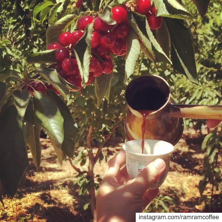 قهوة و حديثاً من أحاديثك ☕️🍒... ramramcoffee turkishcoffee ...