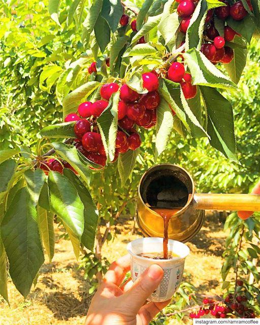 وما بيحلى المزاج الا مع كوب القهوة 🍒☕️.. ramramcoffee turkishcoffee ... (Buarij, Béqaa, Lebanon)