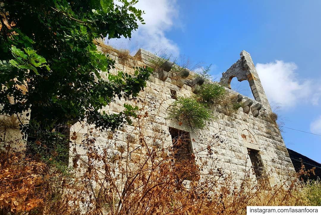 Where do you go when your house isn't home? lebanoninapicture ... (Beit Meri, Mont-Liban, Lebanon)