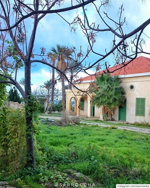 Looking at beauty in the world, is the first step of purifying the mind 🏡... (Tyre, Lebanon)