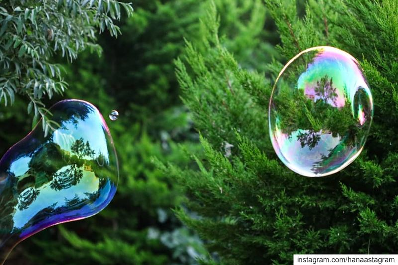 Don't ever let anyone burst your bubble.... Enjoy the little things in...