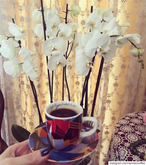 مذاق القهوة لا يكتمل الا مع من تحب.. ramramcoffee turkishcoffee ...