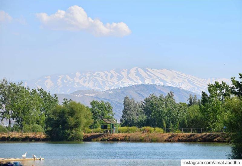 تعنايل... جبل الشيخ.... .... lebanon photography photographylovers ... (تعنايل)