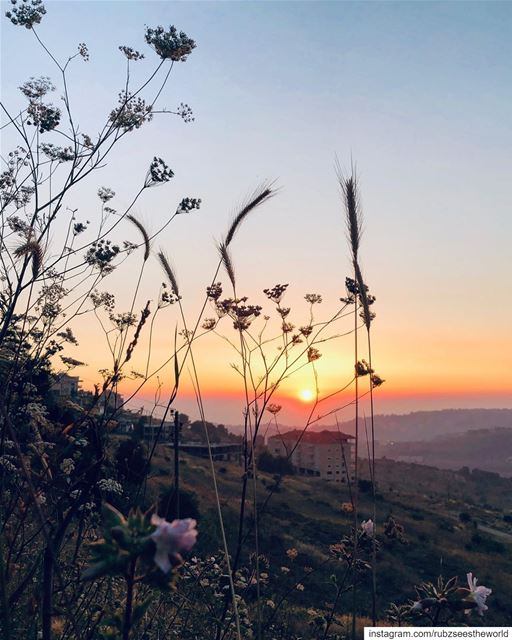 Bhamdoun, Lebanon: golden sunsets and views for days 🌅  rubzseestheworld... (Bhamdoûn, Mont-Liban, Lebanon)