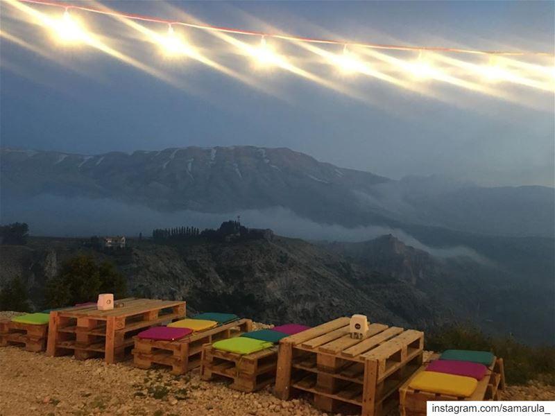 Pick a star on the dark horizon and follow the light 💫... samarula ... (The Cedars of Lebanon)