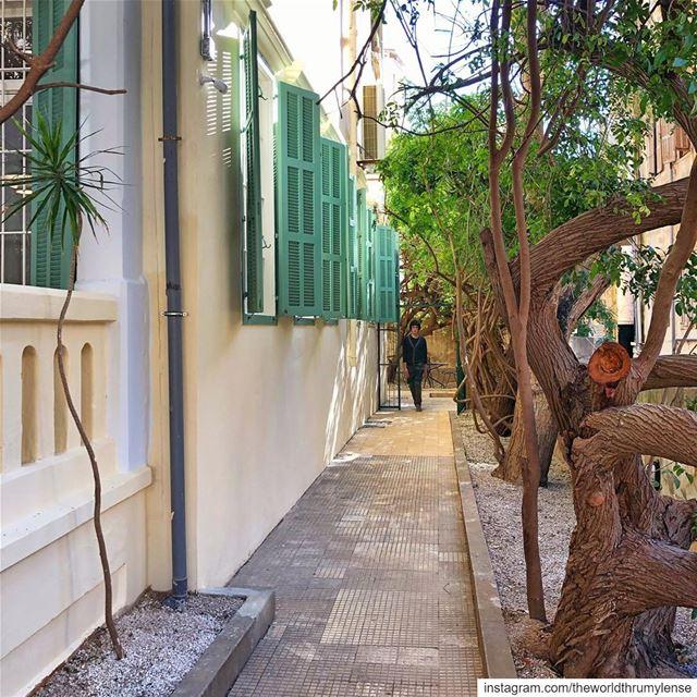 Beirut lebanon shotoniphone ... (Beirut, Lebanon)