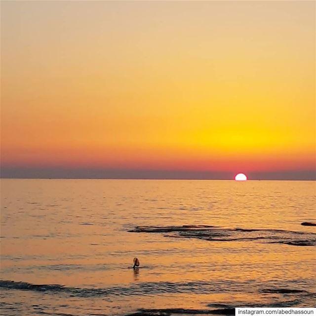 Can you spot the fisherman's hand? 🌅..................... (Tripoli, Lebanon)
