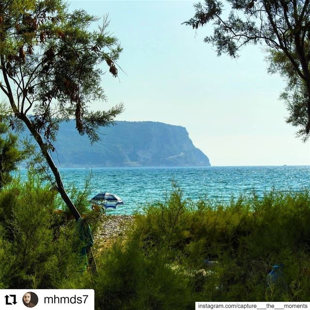 "Repost @mhmds7• • • • • •""To escape and sit quietly on the beach - that... (Chekka)"