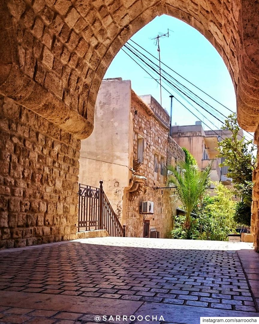 Chase your dreams but always know the road that will lead you home again... (مدينة صور - Tyre City)