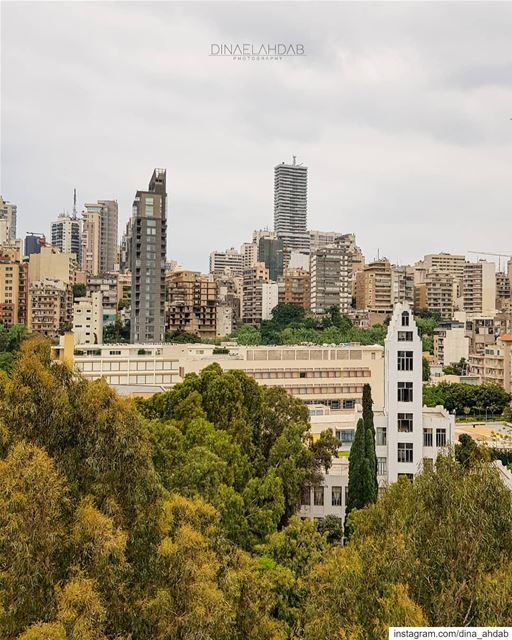 Someone is accidentally planting buildings 👀__________________________... (Beirut, Lebanon)