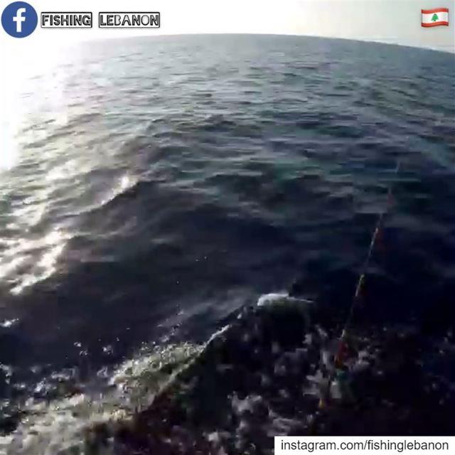 @bmneimneh @alii_loz @hasan.allaz & @fishinglebanon - @instagramfishing @ji (Beirut, Lebanon)