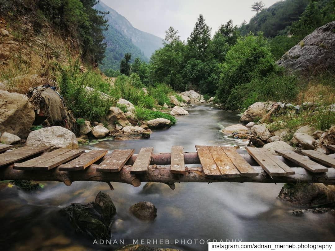 قبعيت عكار ❤️ huawei nature photography love naturephotography ... (Ab3It - قبعيت)