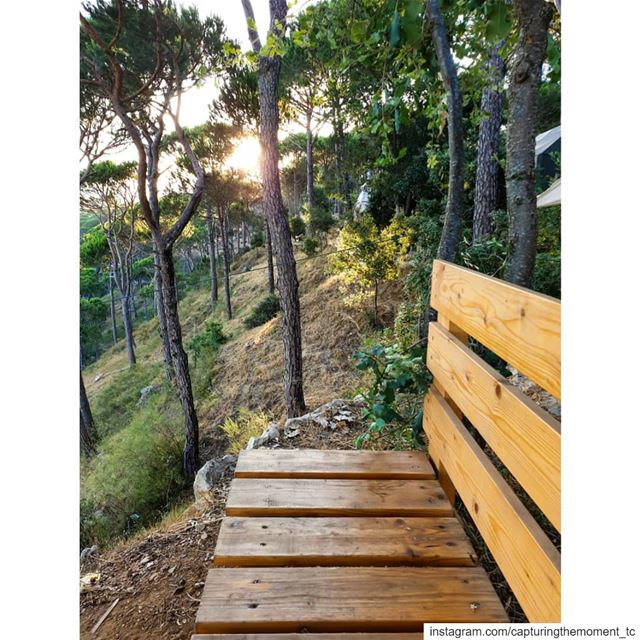 morning seat lecamp deirelharef nature lover naturephotography sunrise... (Le Camp)