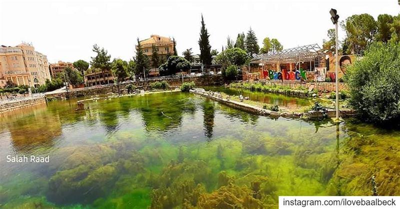 By Salah Raad Baalbeck IloveBaalbeck Lebanon livelovebaalbeck ...