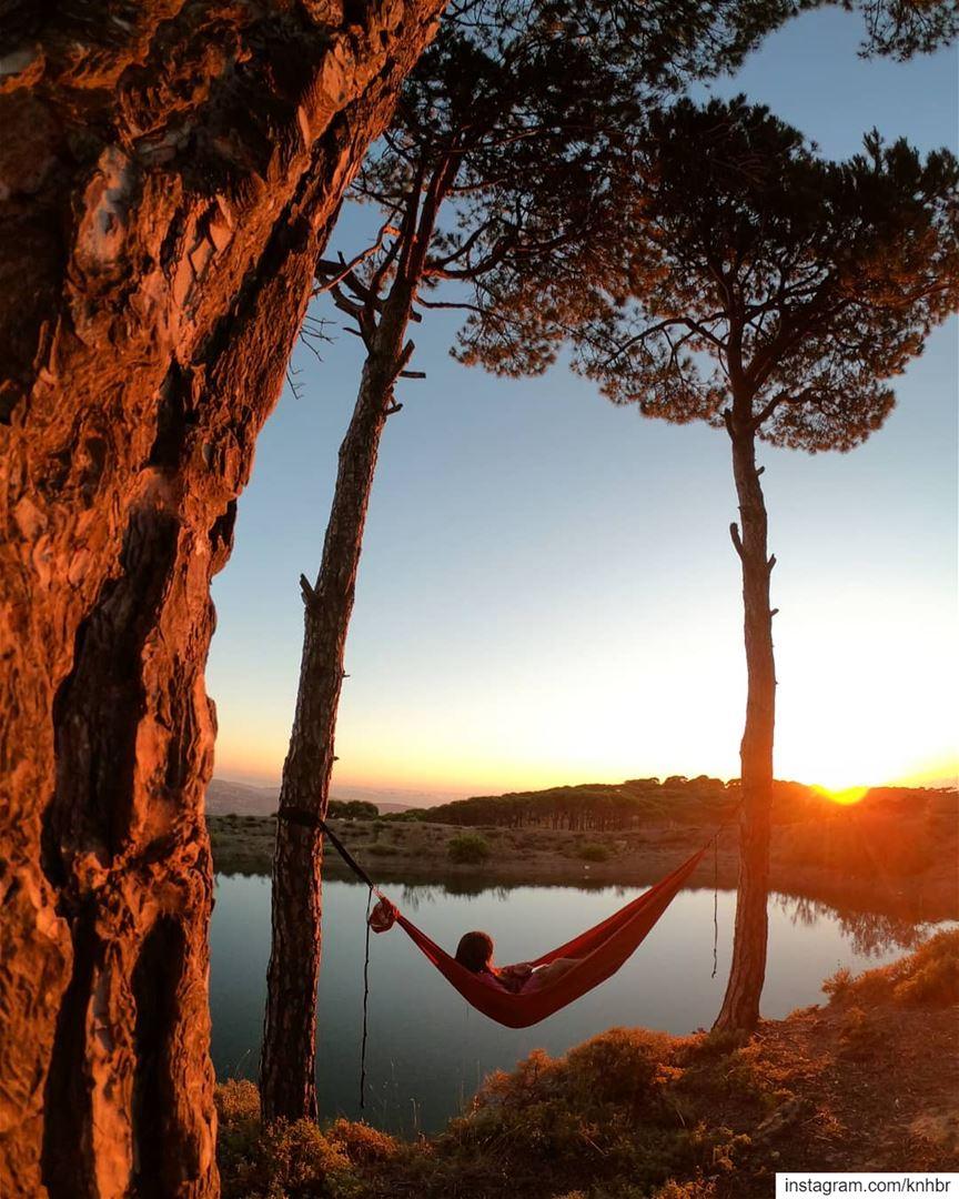 With my therapist 🏕️ naturetherapy sunset sunsetlover insta_lebanon ... (Falougha, Mont-Liban, Lebanon)