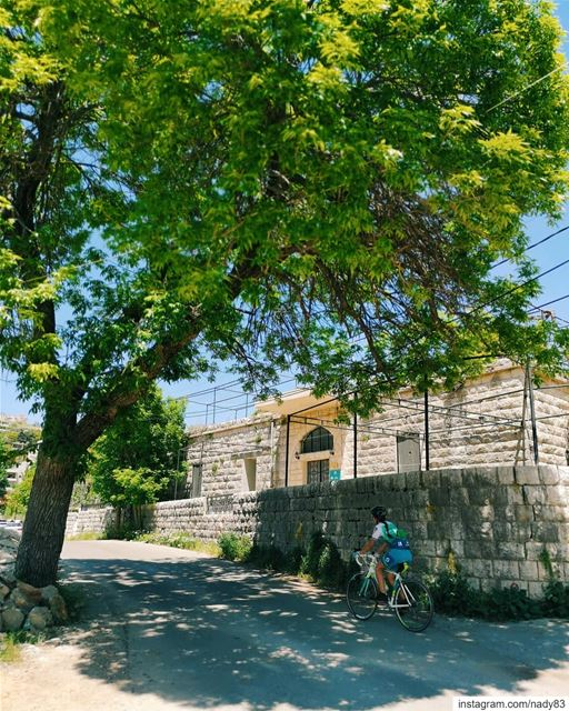 🚴‍♂️🌲🌄🚴‍♀️🌲... cycling instagood webstapick photooftheday ... (Maasser Ech Chouf, Béqaa, Lebanon)