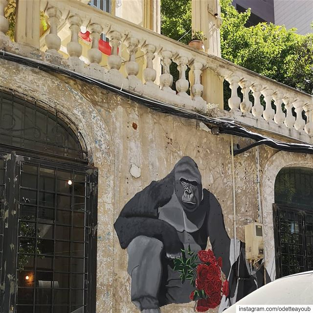 Hello my friend🦍🐒🐵____________________________________ graffitiart ... (Achrafieh, Lebanon)