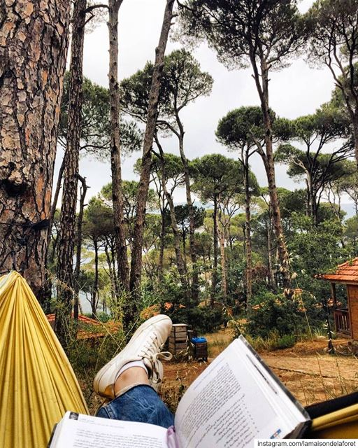All you need... a hammock, a book and a nice view 🏡🌳💆‍♀️ ⠀⠀⠀⠀⠀⠀⠀⠀⠀⠀⠀⠀ ⠀⠀