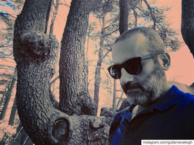 lebanon tannourinecedars selfie naturelovers portraitphotography ...