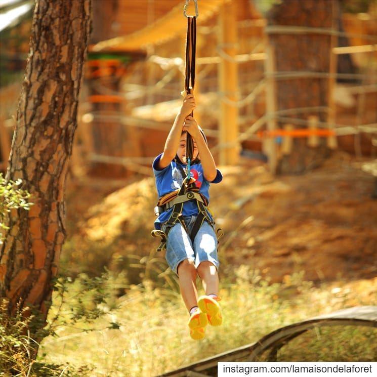 Zipping into the weekend! 😁 Zipline Ziplines Ziplining ...
