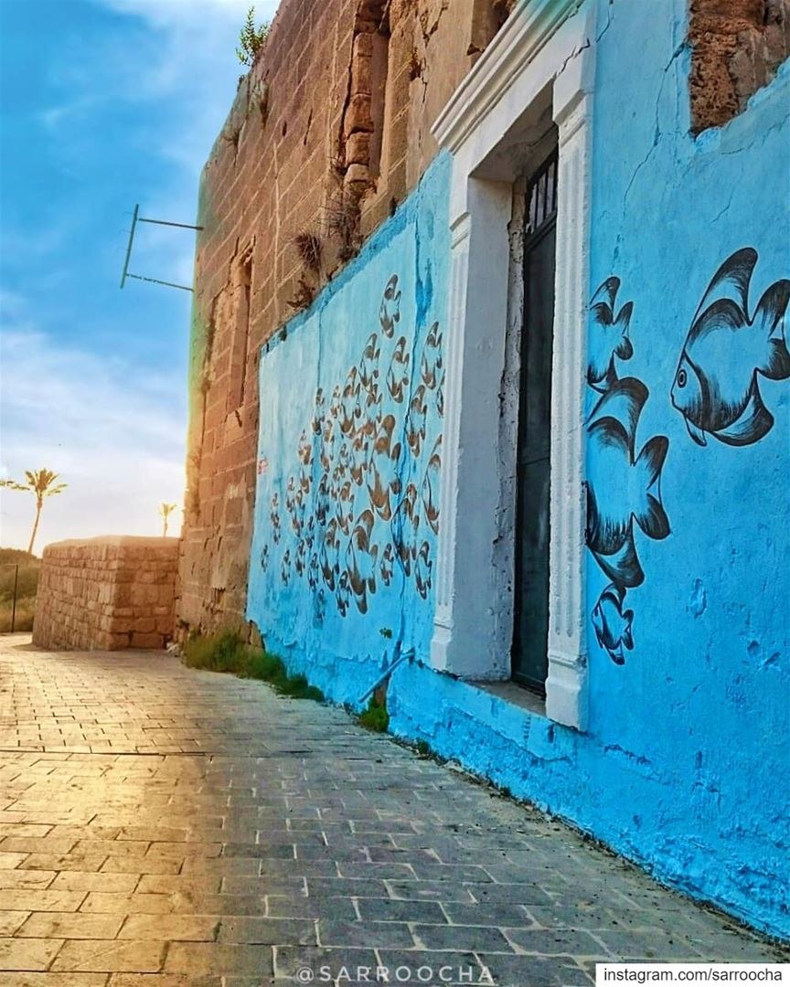 You got to go down a lot of wrong roads to find the right one. takenbyme... (Tyre, Lebanon)