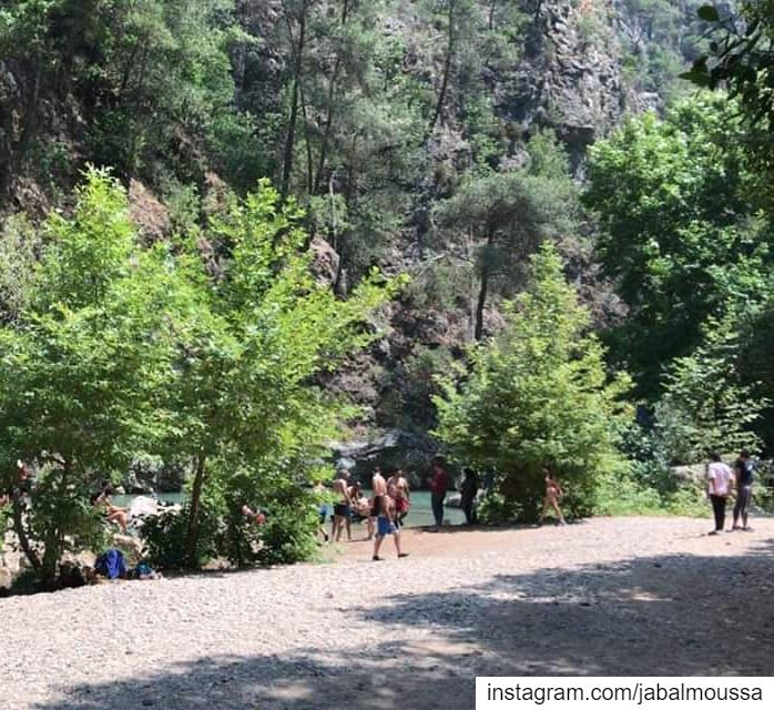 Live from Chouwan lake. JabalMoussa nocamping nopicninc unescomab ... (Jabal Moussa Biosphere Reserve)