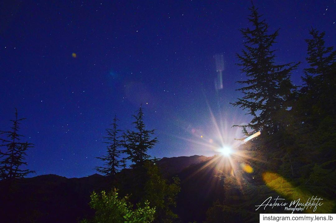 Aim for the moon. If you miss, you may hit a star. ehden ehdenspirit ... (Horsh Ehden Nature Reserve)