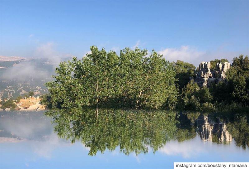 A whole new world......✨••••••••••••••••••••... (Feitroun, Mont-Liban, Lebanon)