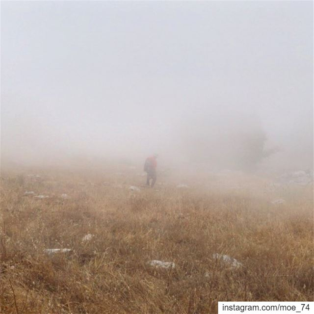 I must go in! The fog is rising. lebanon  hike  hiking  trek  trekking ... (Jabal Moussa Biosphere Reserve)