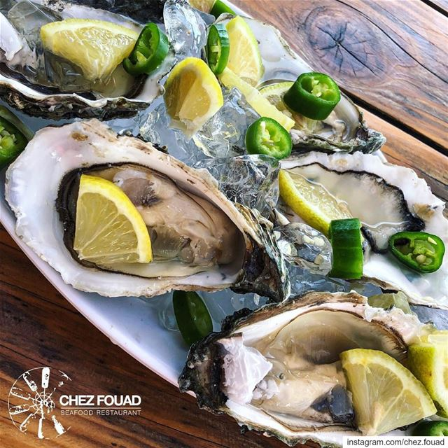 freshoysters @chez.fouad 🌊☀️ For reservations 📞70 830 117 **************