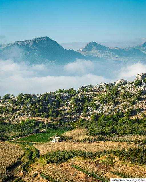Good Morning 🌞 Lebanon 🇱🇧 Lassa Top Mountain Mountains Nature ... (Lassa-Jbeil)