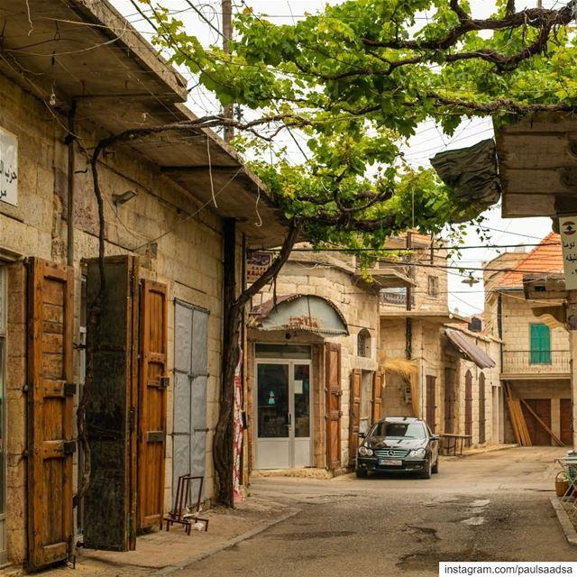 Douma Old Souks,... (Douma, Liban-Nord, Lebanon)