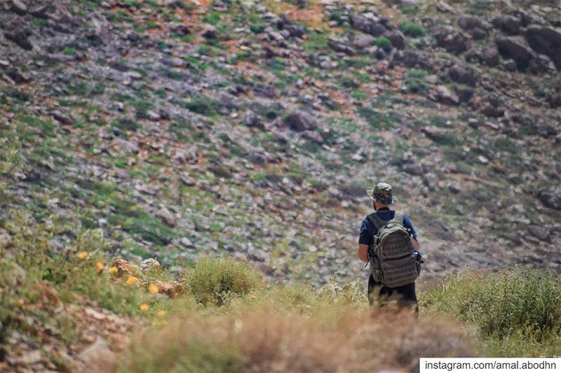 عاشق لون الطبيعة 🍃🌳..... lebanon photography photographylovers ... (Mount Hermon)