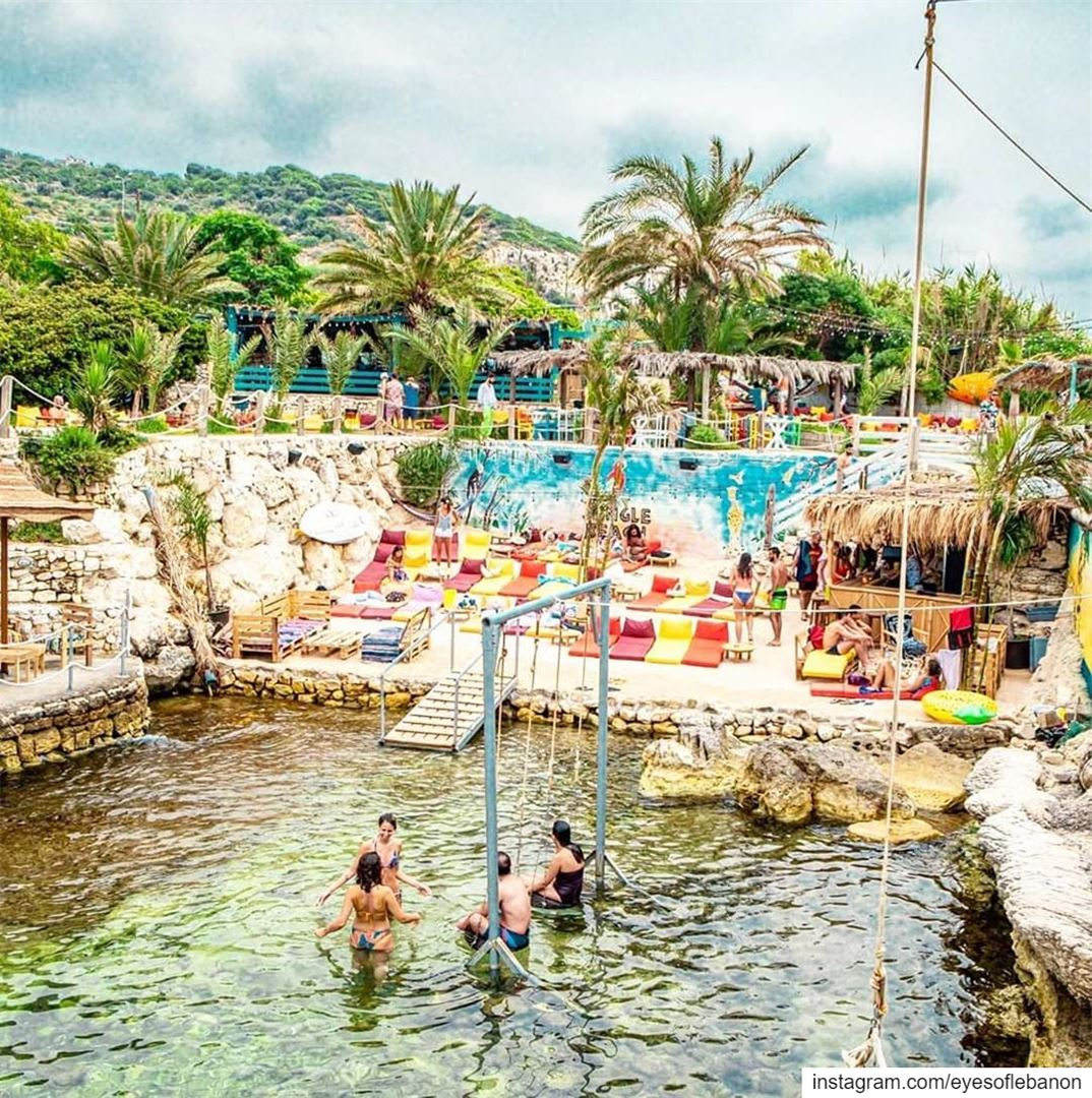 """COMPETITION TIME """" 🥳Is there a better way than spending your weekend at... (Jungle Beach Amch)"""