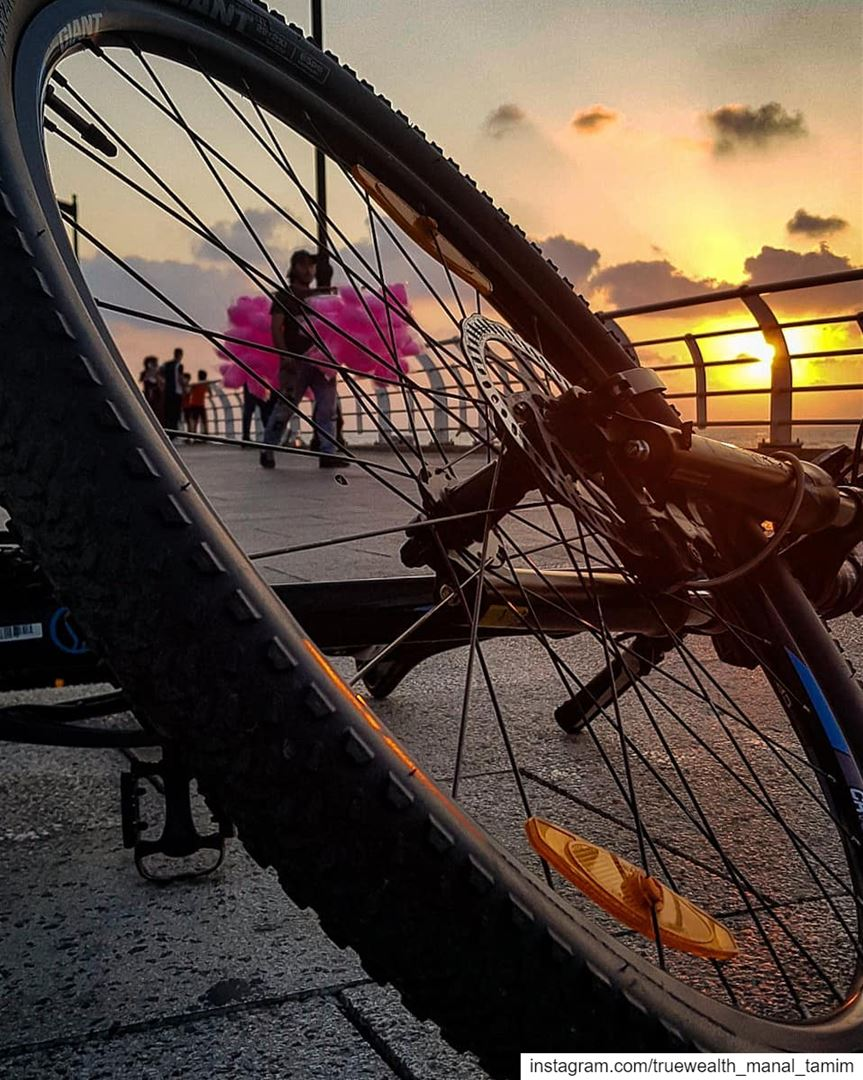 I have One brain& Five toes on both sides°♎........ cycling ... (Beirut, Lebanon)