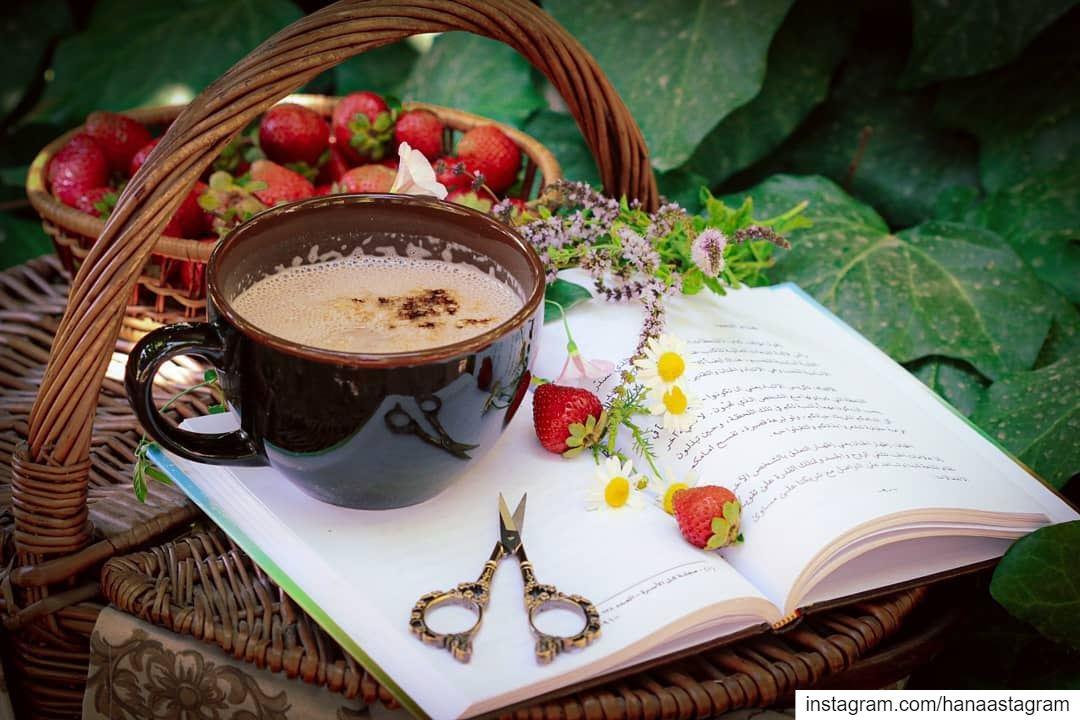 صباح الخير....لا أعرف أحداً مثالياً....لكني أعرف أناساً على الرغم من عيوبهم
